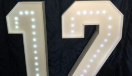 "Giant letter hire ""12"""